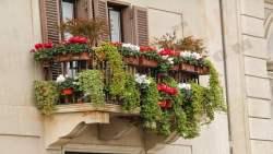 تفسير حلم رؤية الشرفة والبلكون في المنام للعزباء والمتزوجة
