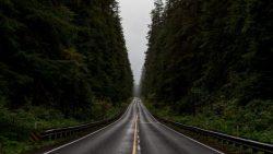 تفسير حلم الشارع المسدود في المنام