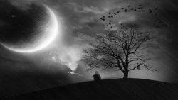تفسير رؤية القمر في المنام لامرأة حامل