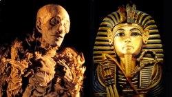 تفسير حلم فرعون للنابلسي