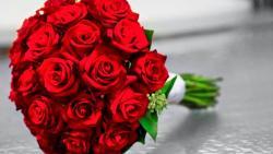 تفسير حلم شتلات الورد والقواوير في المنام