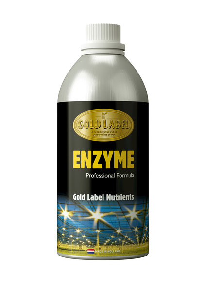 Enzyme Gold Label