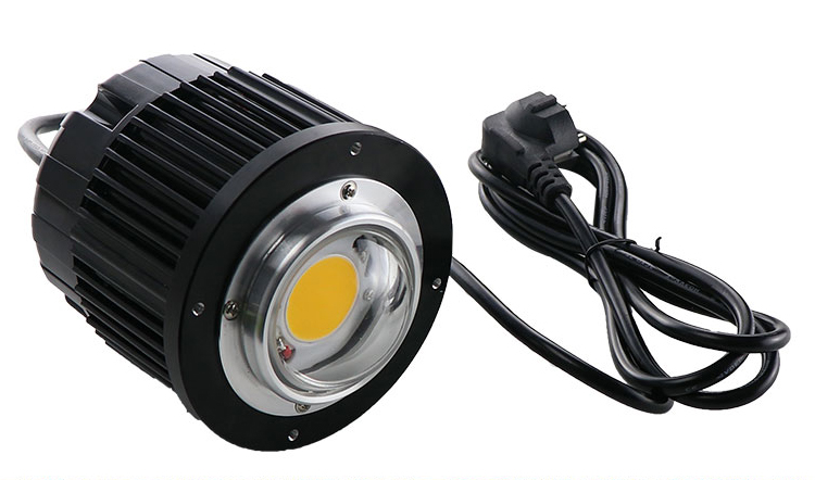 Grow LED Citizen CLU04H-40/85 PRB 60W