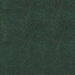 Rainbow – Cordoba – grøn 21932111