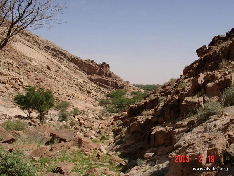 Hima Dhariah 028