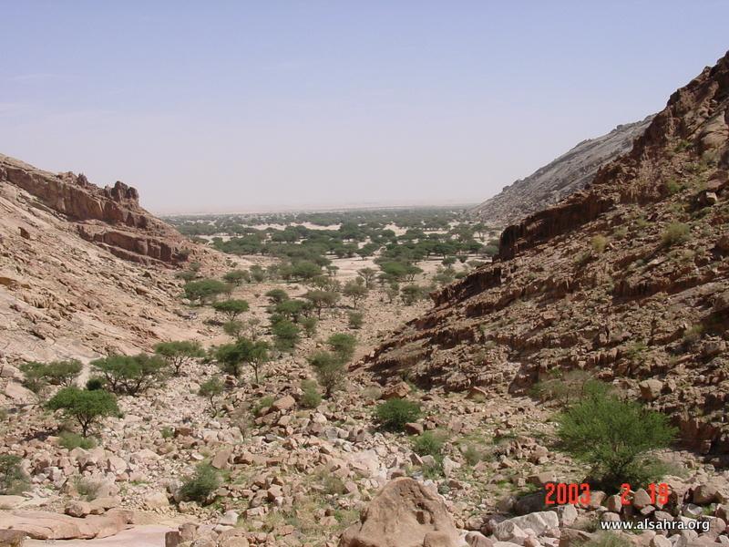 Hima Dhariah 029