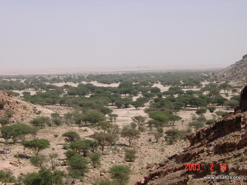 Hima Dhariah 030