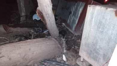Photo of عاجل السكسكية:الرياح تقتلع أشجار سرو وتتسبب بأضرار مادية