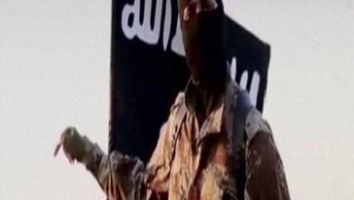 Photo of المؤسسة الأمنية عصب تنظيم الدولة