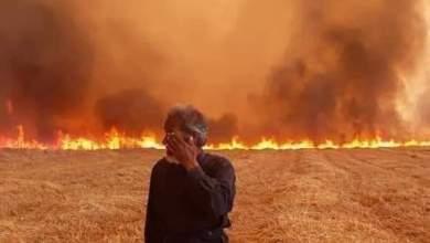 Photo of الحرائق تلتهم مزيداً من المحاصيل الزراعية في محافظة الحسكة