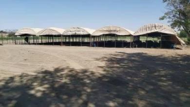 Photo of تحضيرات لإجتماع غداً بين وجهاء من عشائر المنطقة في بلدة ذيبان في ديرالزور