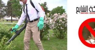 مكافحة الجنادب 0501214920 افضل شركة مكافحة ورش مبيدات بالرياض بجدة