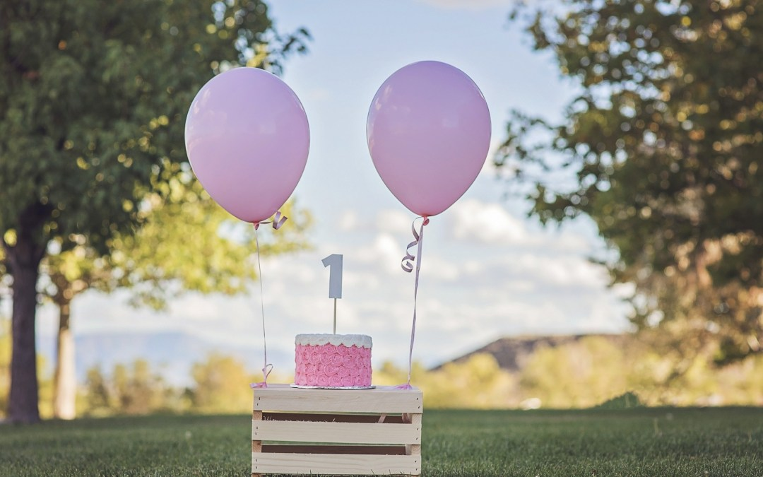 1st Birthday Party Planner Checklist Every Parent Should Have