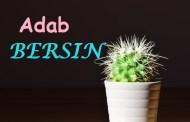 Adab Bersin