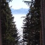 Blick vom Pfliegeleck am Tegernsee