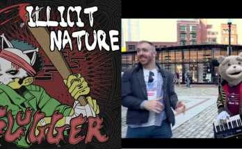 Dan Bauer and Illicit Nature reviewed