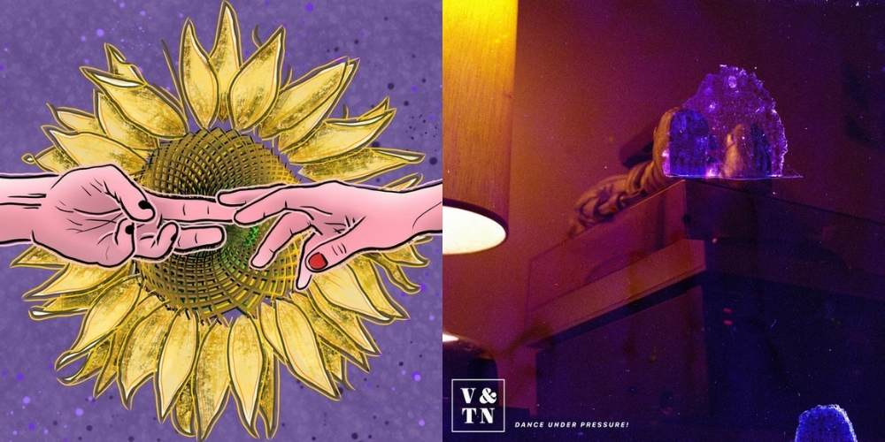 Vincent and the Noise and Sexy Pigeon reviewed