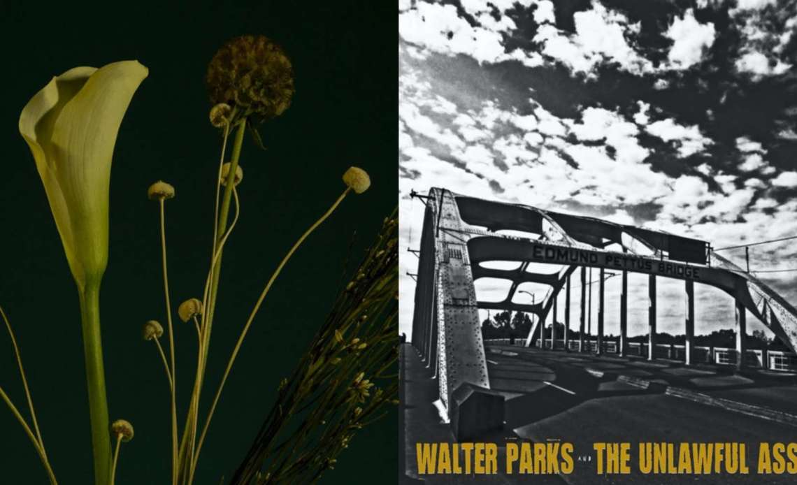 Walter Parks & The Unlawful Assembly and Endearments reviewed