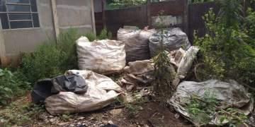 Joviânia teve um crescimento de casos de dengue. Foto: divulgação.