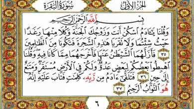 Photo of لمحات جمالية في آيات القرآن (5)