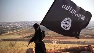 Photo of التخريب والعدوان تحت رايات جماعات الإرهاب