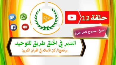 Photo of التدبر في الخلق طريق التوحيد