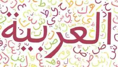 اللغة العربية تحفظ هوية المسلمين