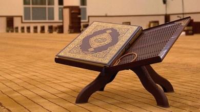 صورة القصص القرآني.. عبرة وتربية