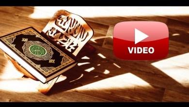Photo of بالفيديو .. جوامع الكلم في 5 آيات قرآنية