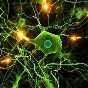 https://www.castanet.net/news/Natural-Health-News/59837/Neural-Therapy