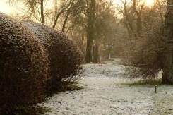Agora Winter 20
