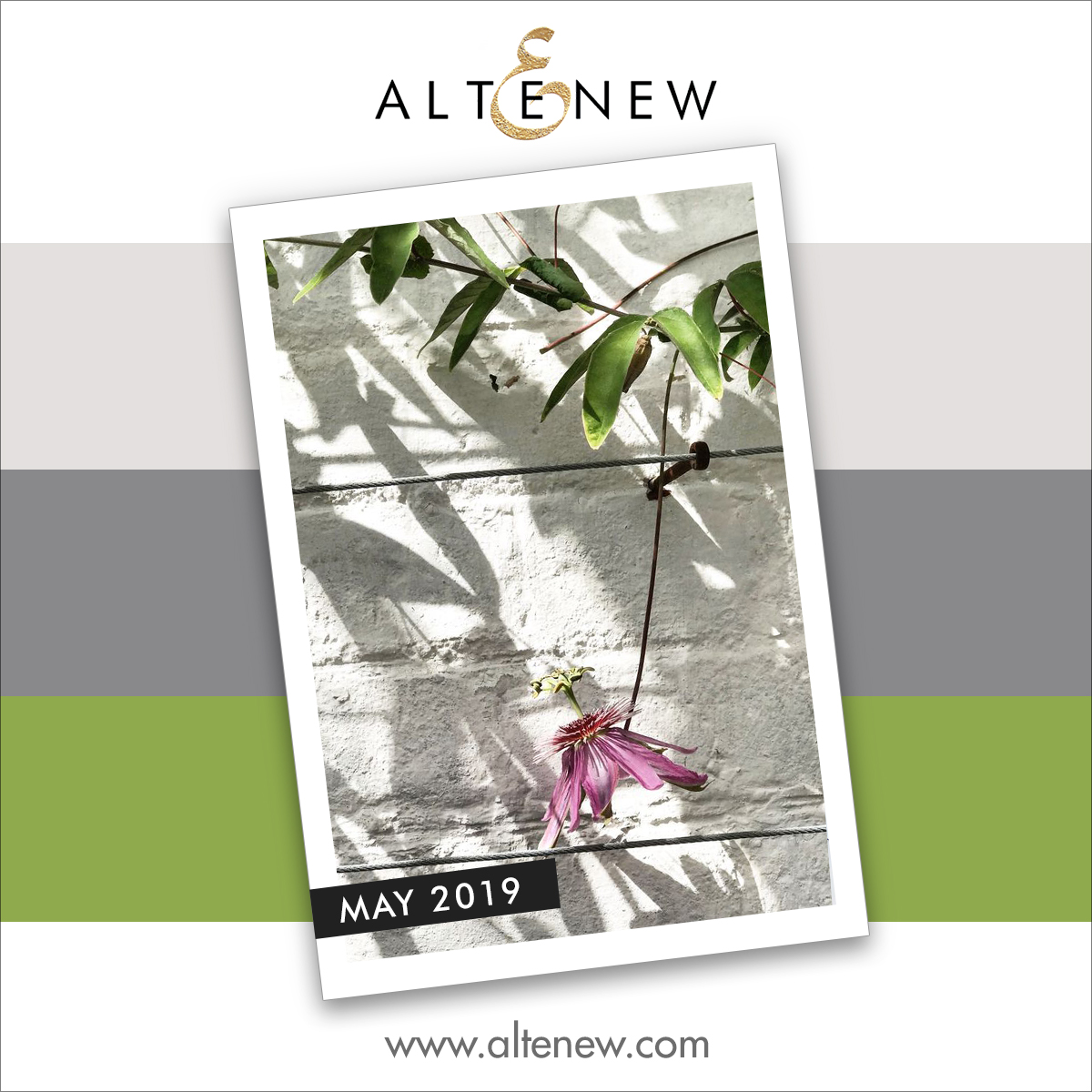 Altenew May Inspiration Challenge