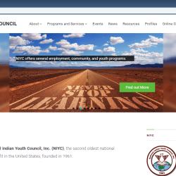 NIYC website screenshot