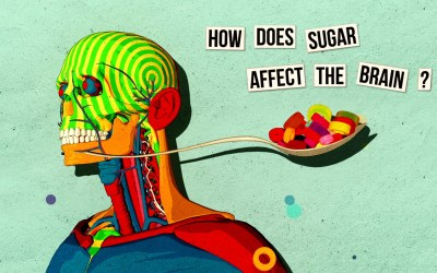 TEDEd: How Sugar Effects the Brain