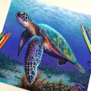 Impressive Realistic Color Pencil Illustrations From 22-Year-Old Morgan Davidson