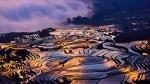 20 Awe-Inspiring Photographs of Rice Fields at Sunset