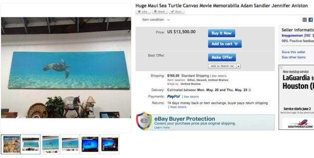 Most Stupid Things You Can Buy From Ebay - Turtle Poster