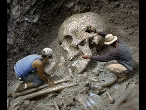 Very Strange Bones. Did Giants Really Exist ?
