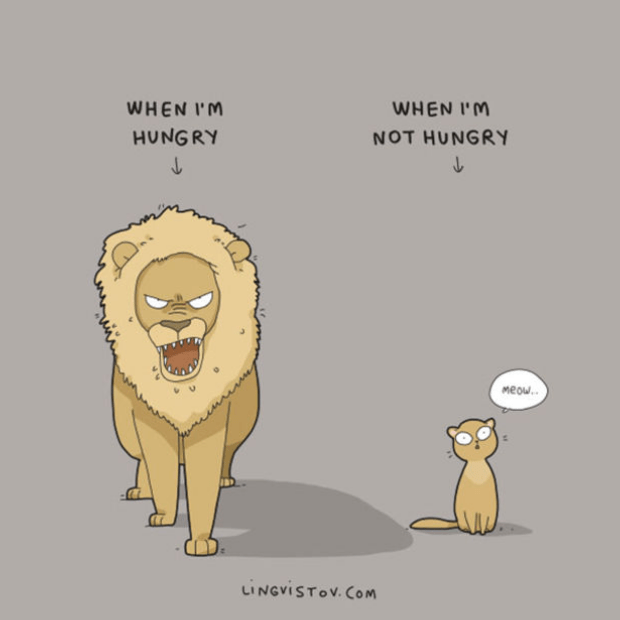 Brilliant-Animal-Comics-9