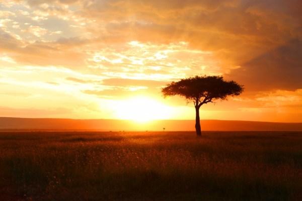 beautiful sunsets 14