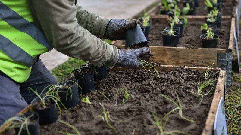 Escobar Sostenible,  en lo que va de octubre se recolectaron 20 toneladas de Residuos Sólidos Urbanos