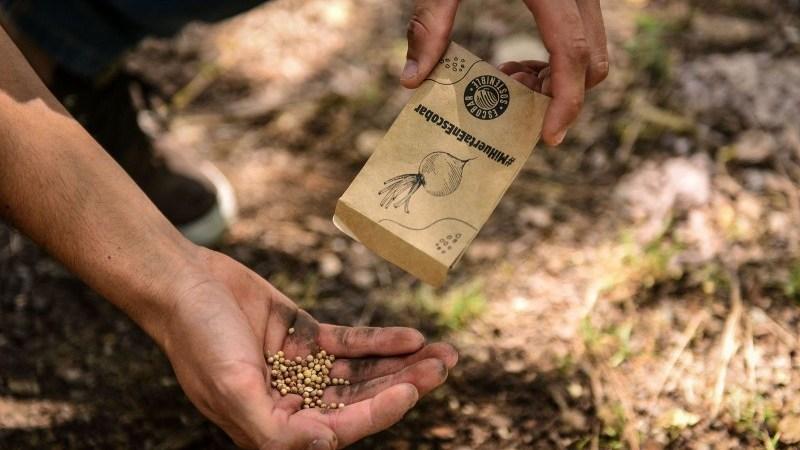 La Municipalidad de Escobar ya entregó más de 10.000 kit de semillas de verduras y hortalizas  y 90.000 semillas aromáticas a vecinos y vecinas del distrito
