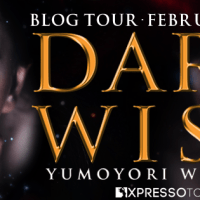 DARK WISH #Review & #BookBlitz: Plus #INTL #Giveaway with #author Yumoyori Wilson! #Fantasy #ReverseHarem #Romance