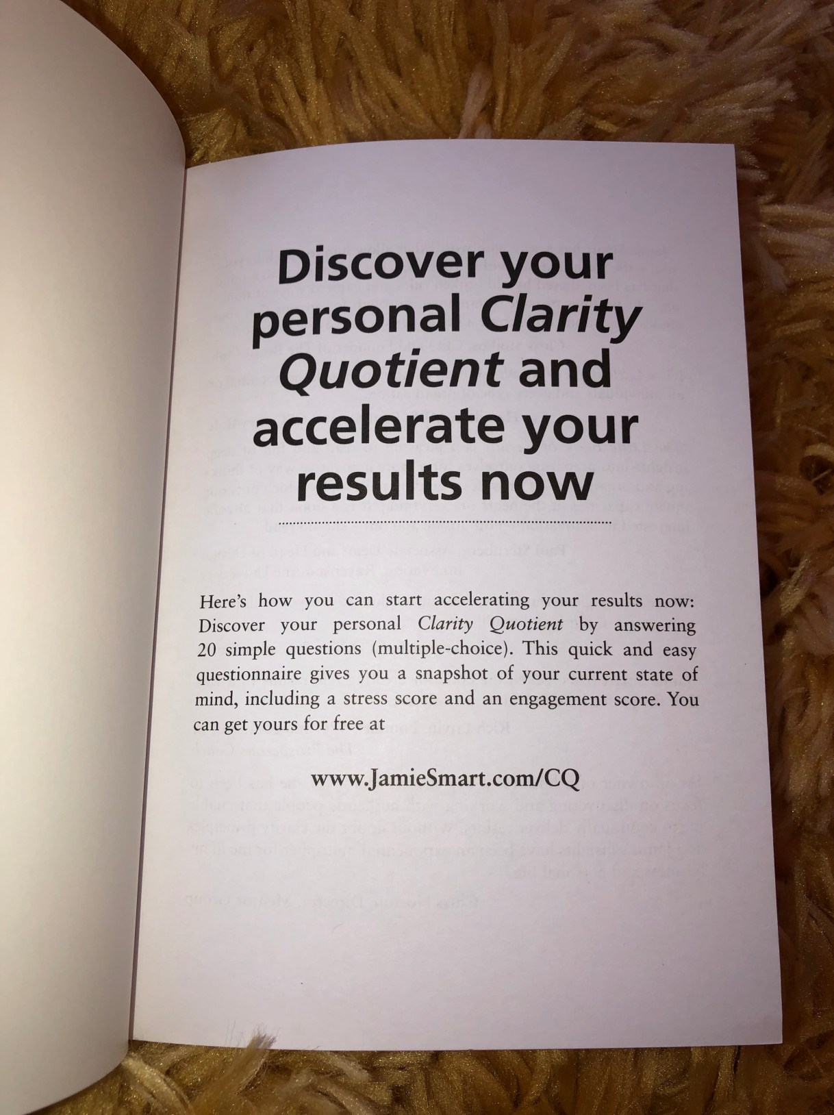 The Little Book of Results by Jamie Smart on Alternative-Read.com