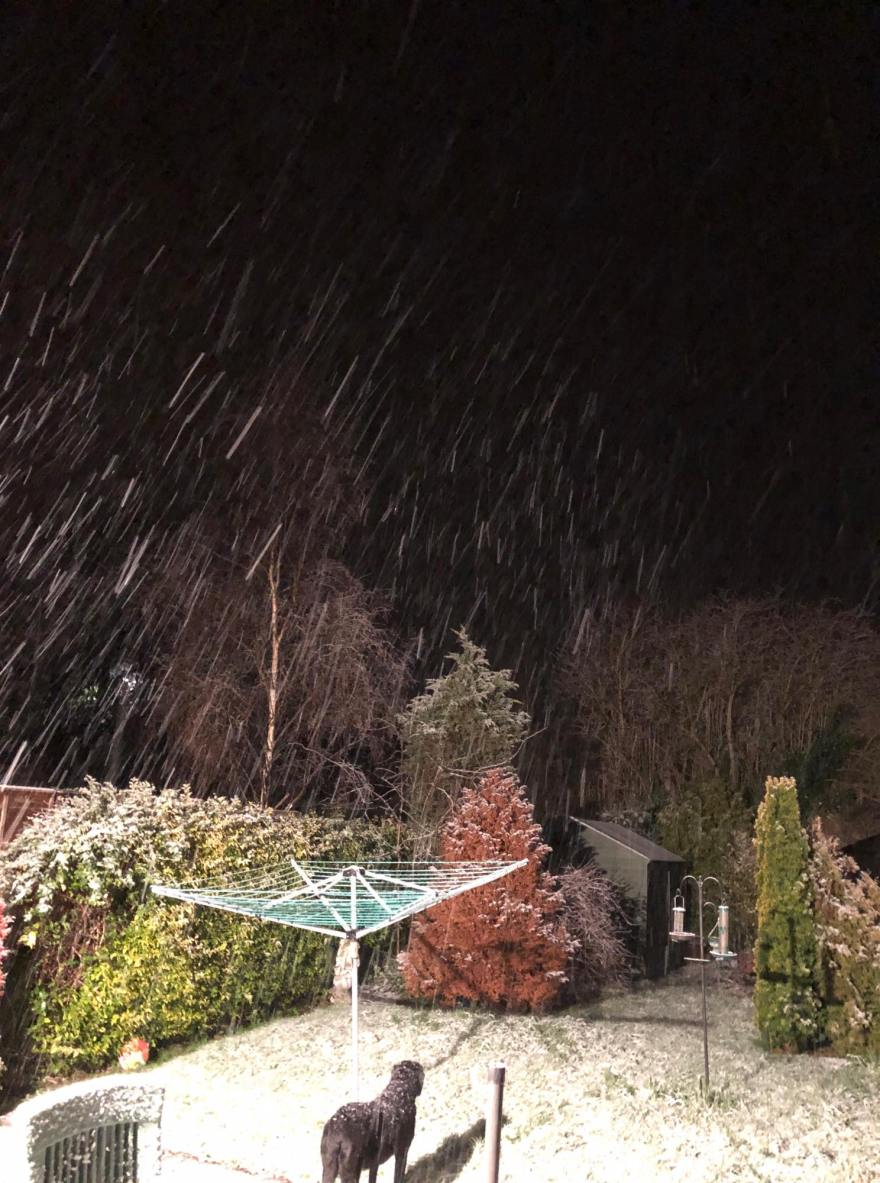 """It's Snowing in Sassy Land! 