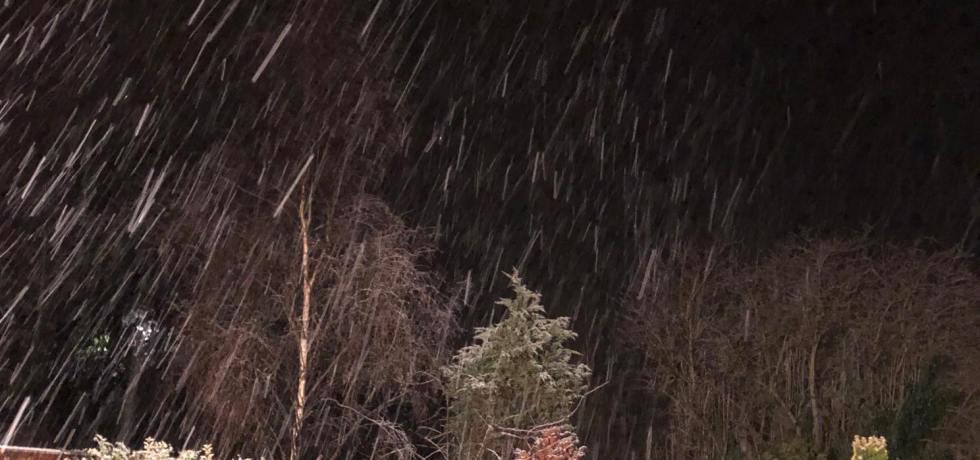 It's Snowing in Sassy Land! | Alternative-Read.com