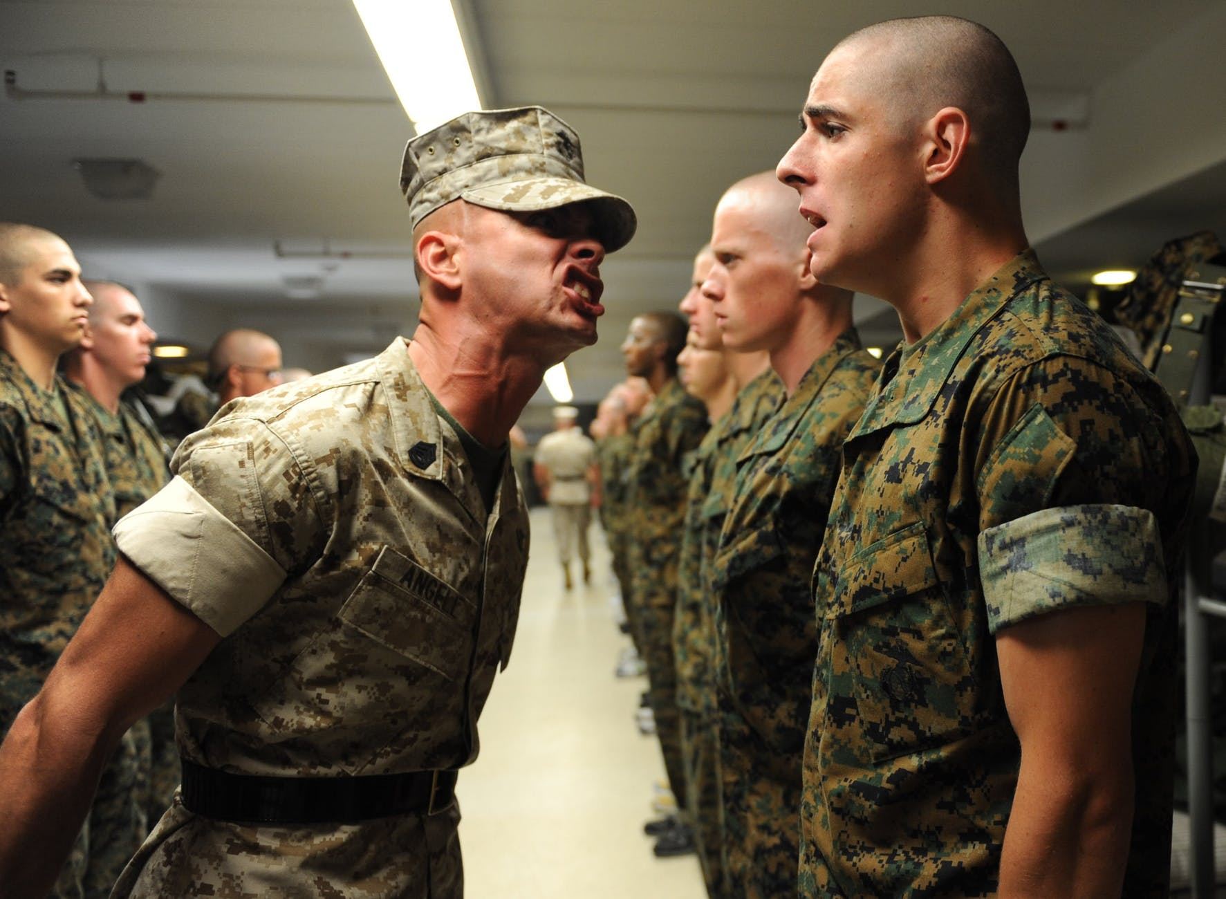 army authority drill instructor group