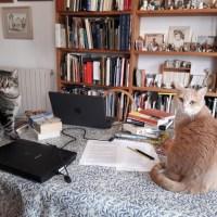 What's on your desk, Wednesday? Katherine Mezzacappa ... #AuthorSpotlight #Interview with @katmezzacappa #TuscanEnchantment