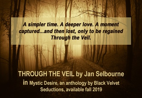 Through the Veil by Jan Selbourne