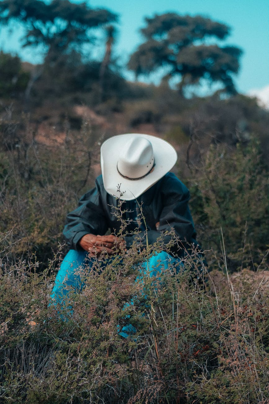 man sitting near grass field